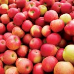 Apples and Lyme Symptoms